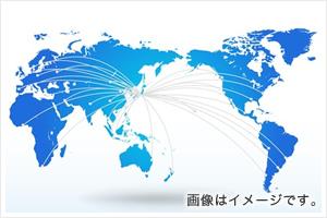 海外向け開発